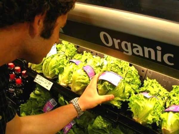 Makanan Organik Tak Menjamin Tubuh Bebas Kanker